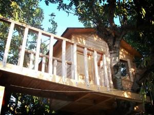 Casita de madera realizada sobre árbol en exteriores de un chalet
